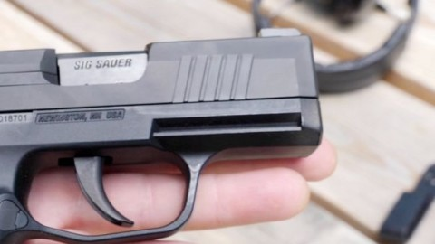 The SIG Sauer P365 Pistol Review